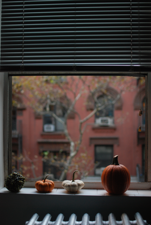 Halloween Decorations Sept 29, 2013 177
