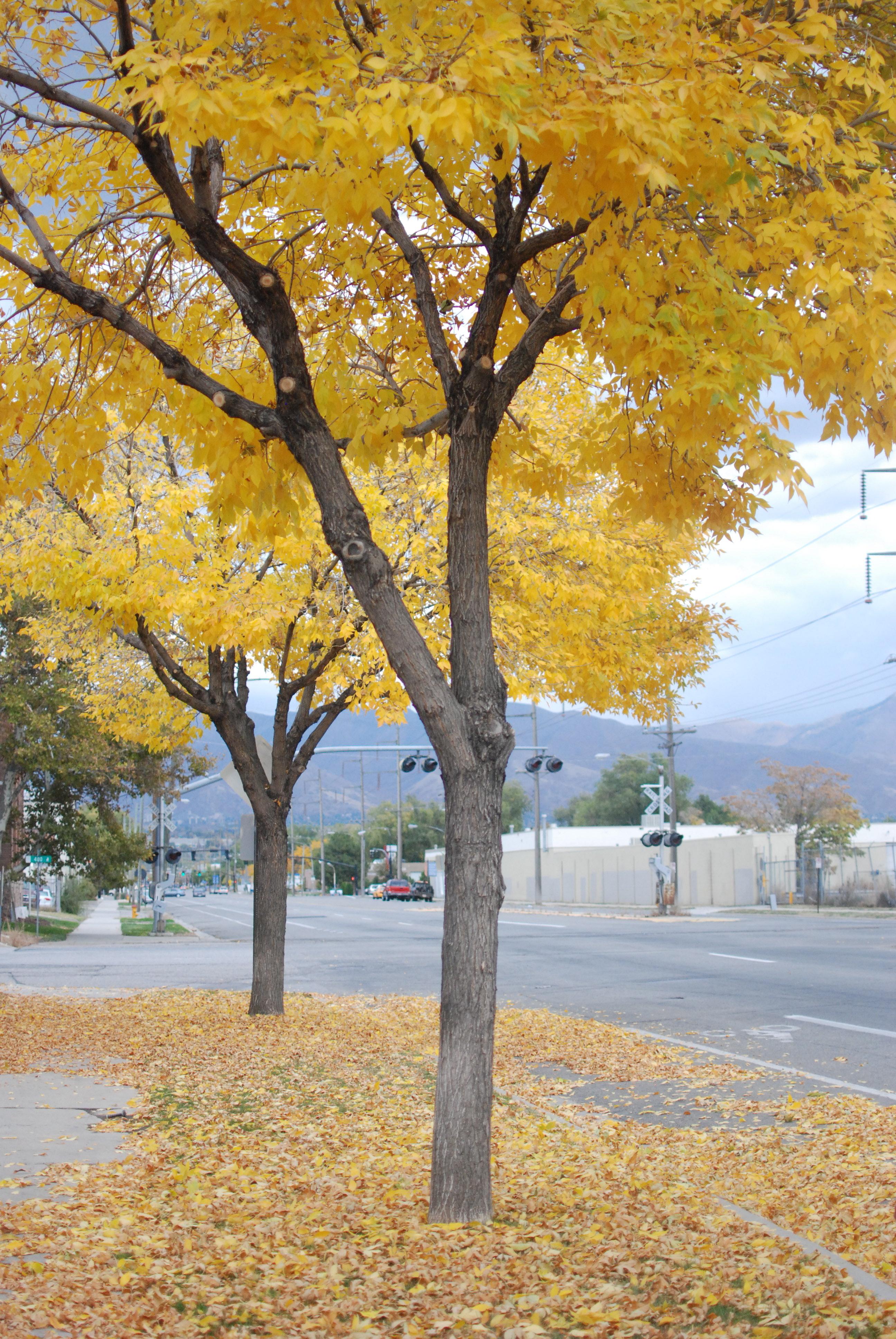 Oct 22, 2012 33
