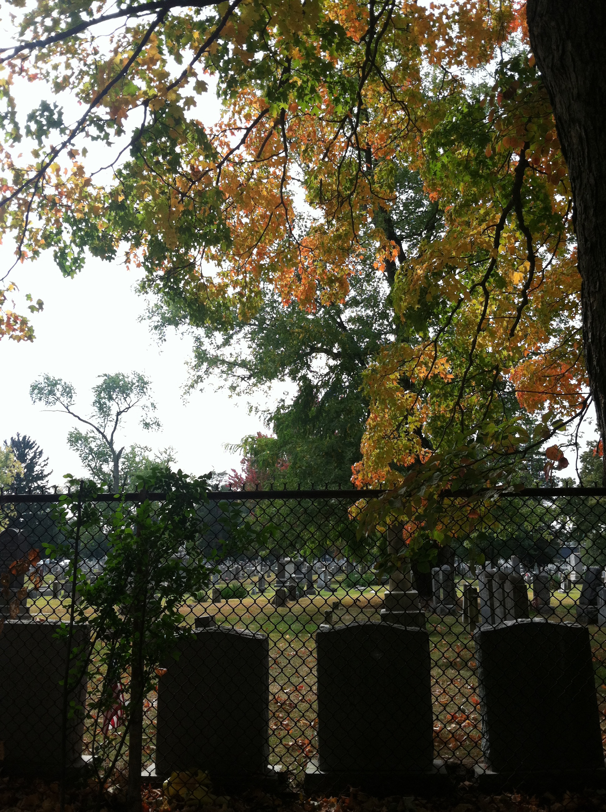 And then we went to a Jersey Cemetary Oct 19, 2013 157