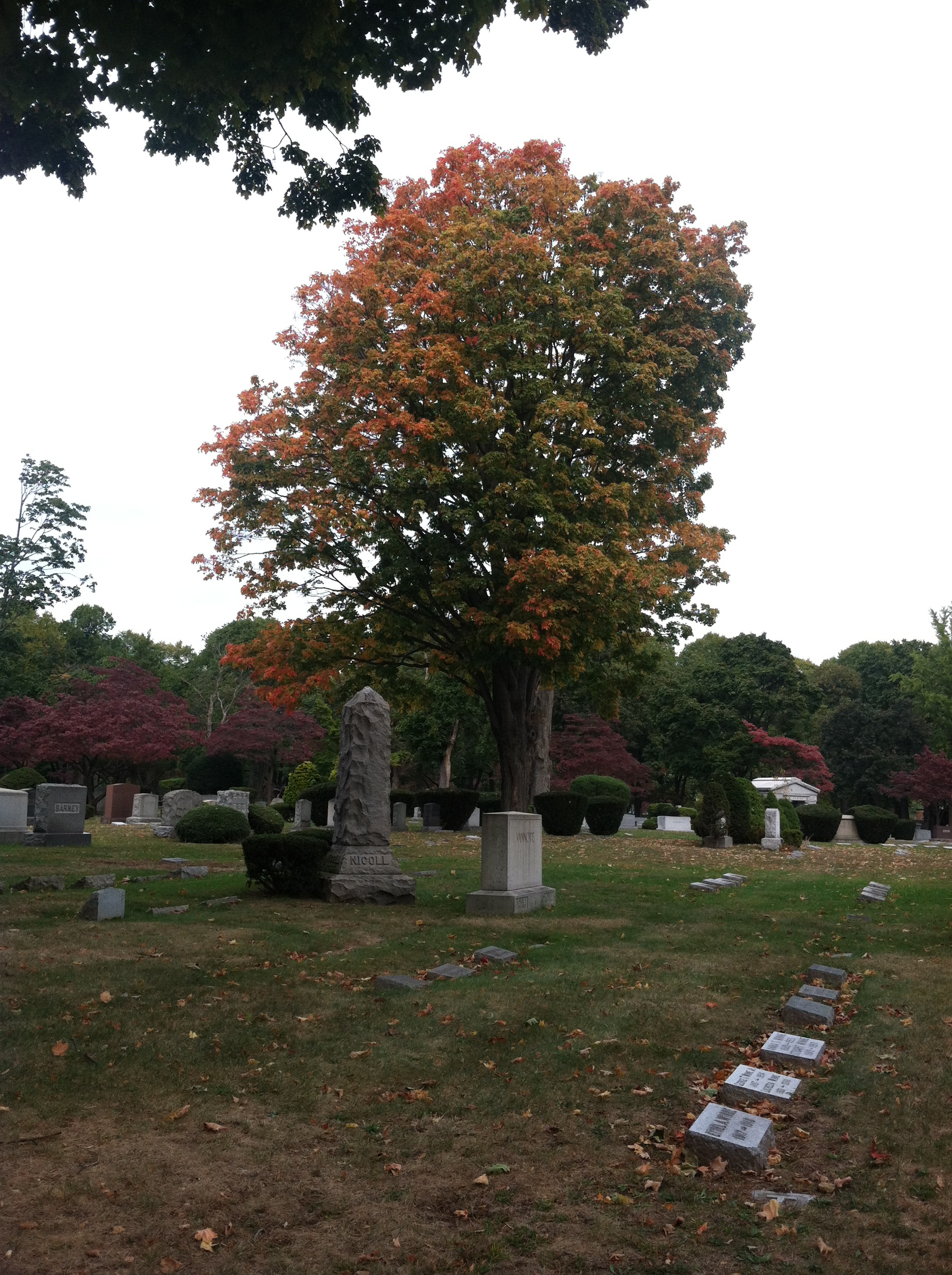 And then we went to a Jersey Cemetery Oct 19, 2013 125