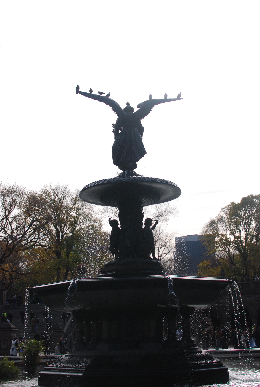 Central Park November 9, 2013 34