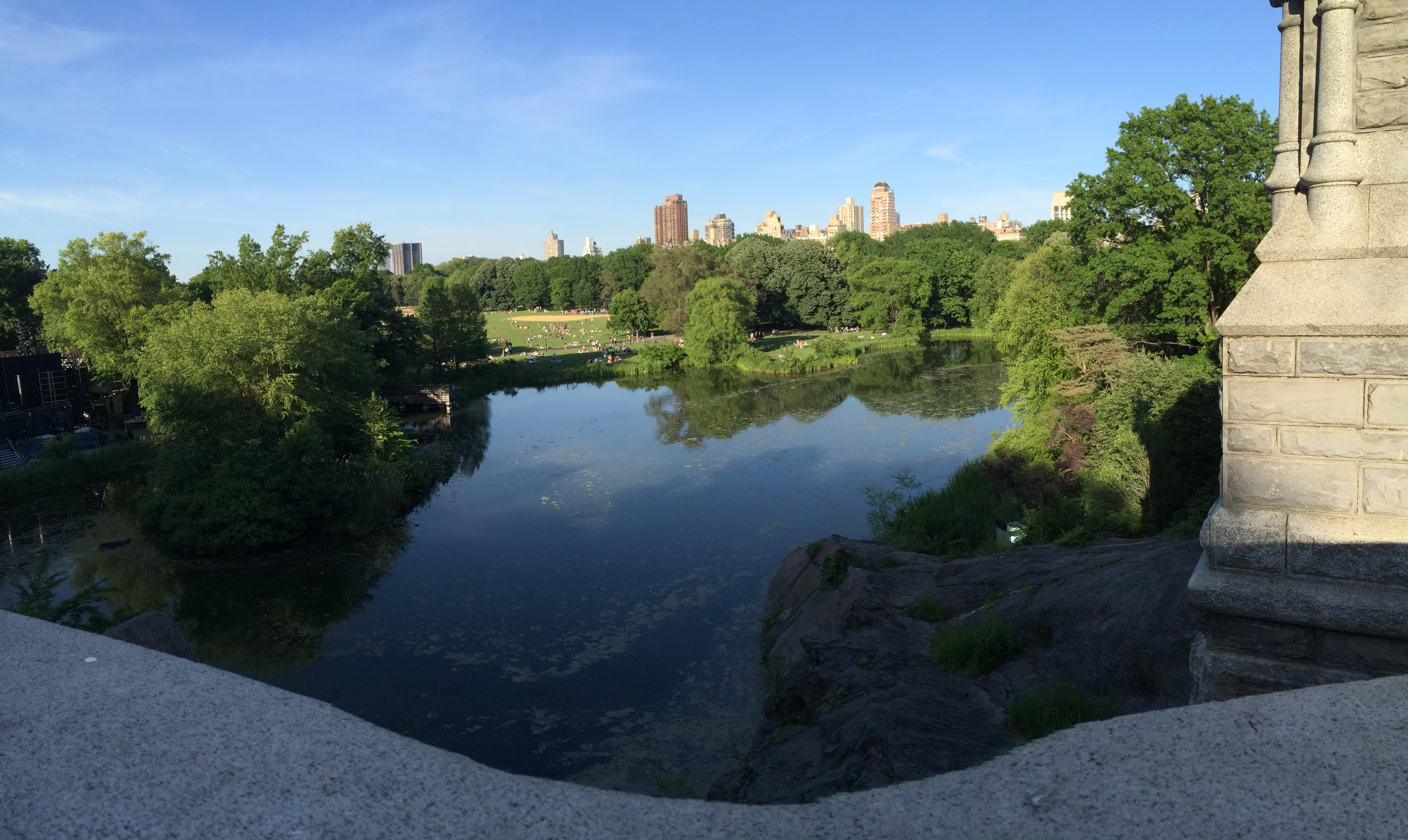 Central Park on Sunday June 1, 2014 610