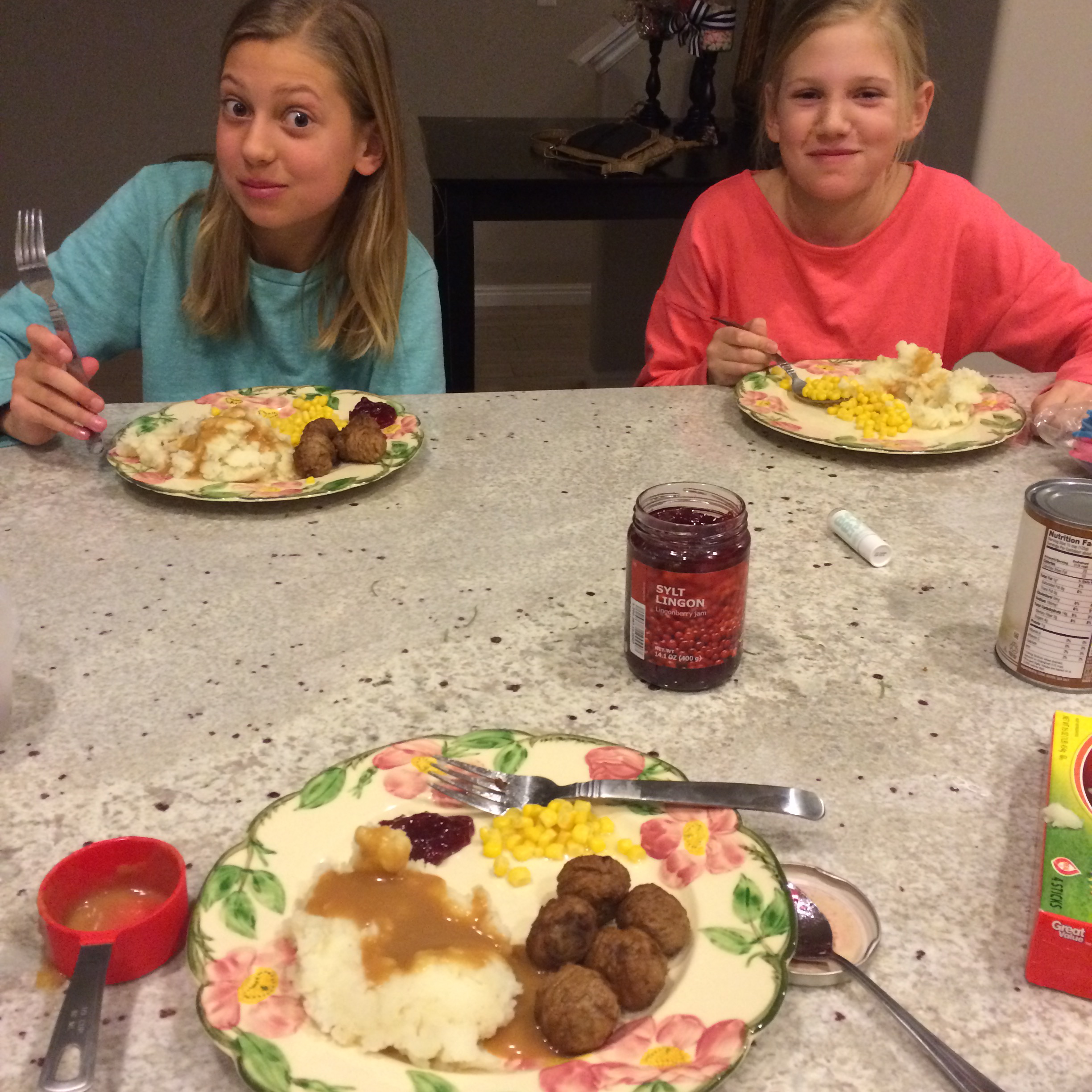 Sleepover with Em & Noelle - Jan 1, 2015 404