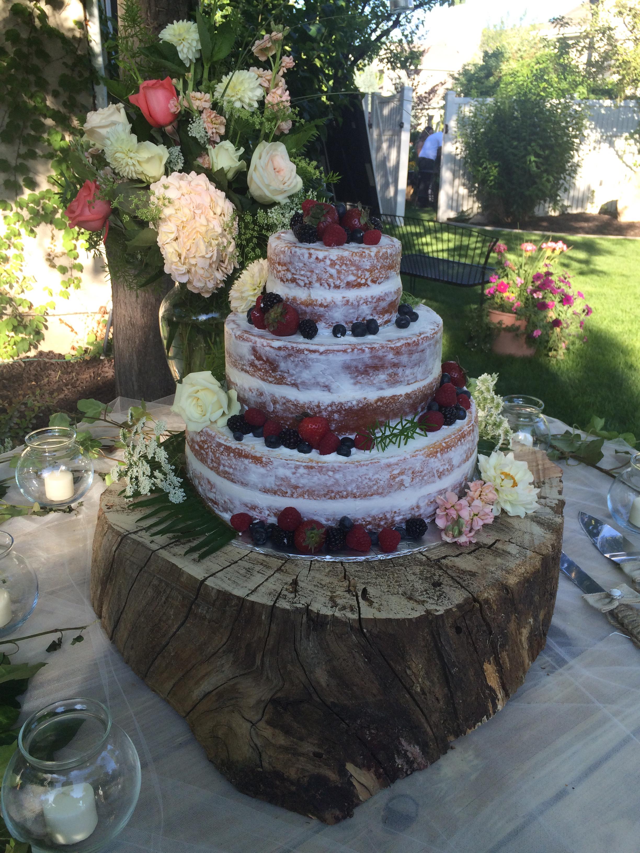 Maddie's Wedding June 25, 2015