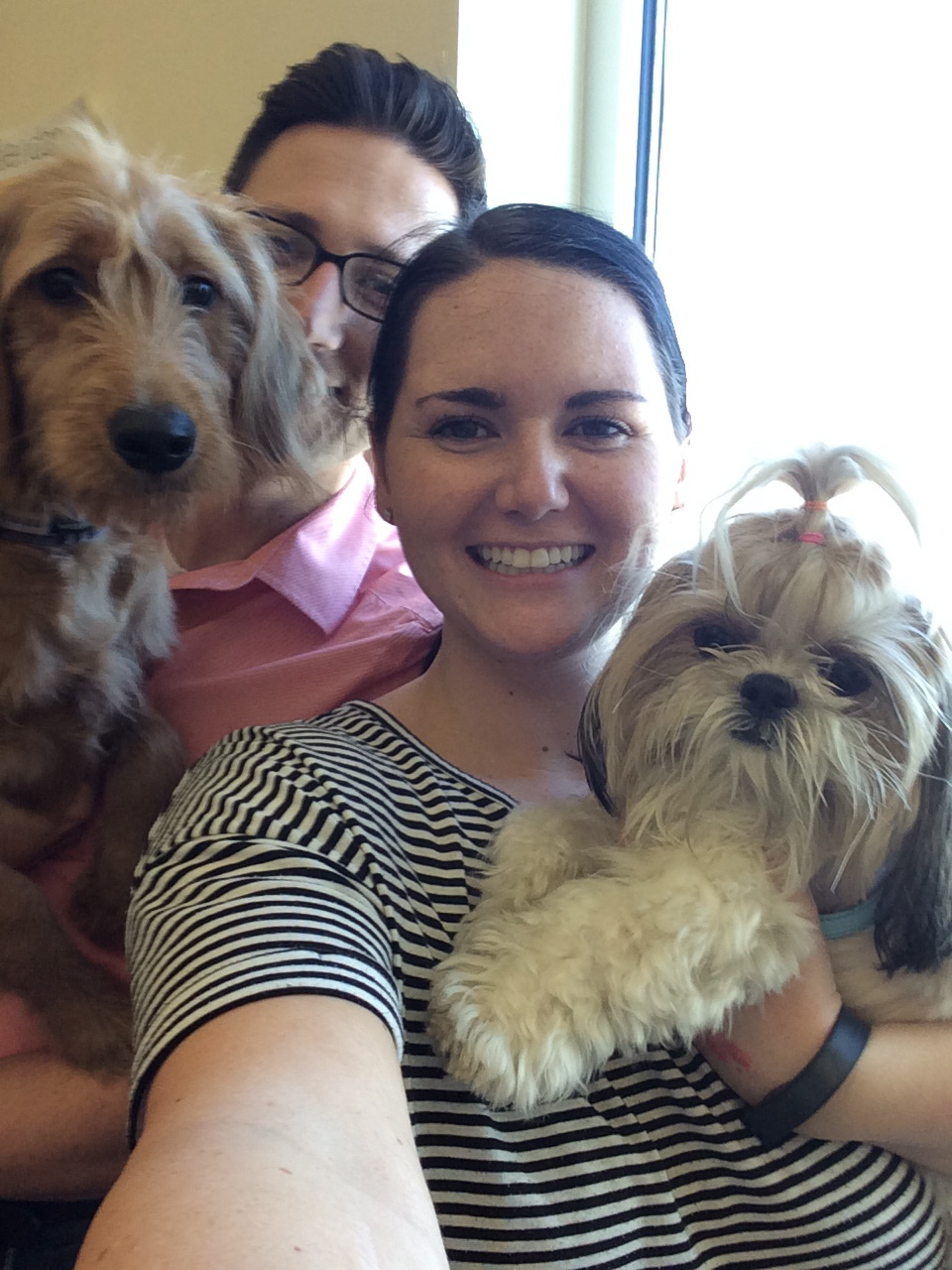 Bring your dog to work day! August 27, 2015485