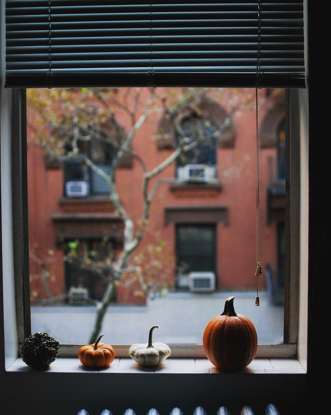 Happy October. TBT Oct 1, 2015 6