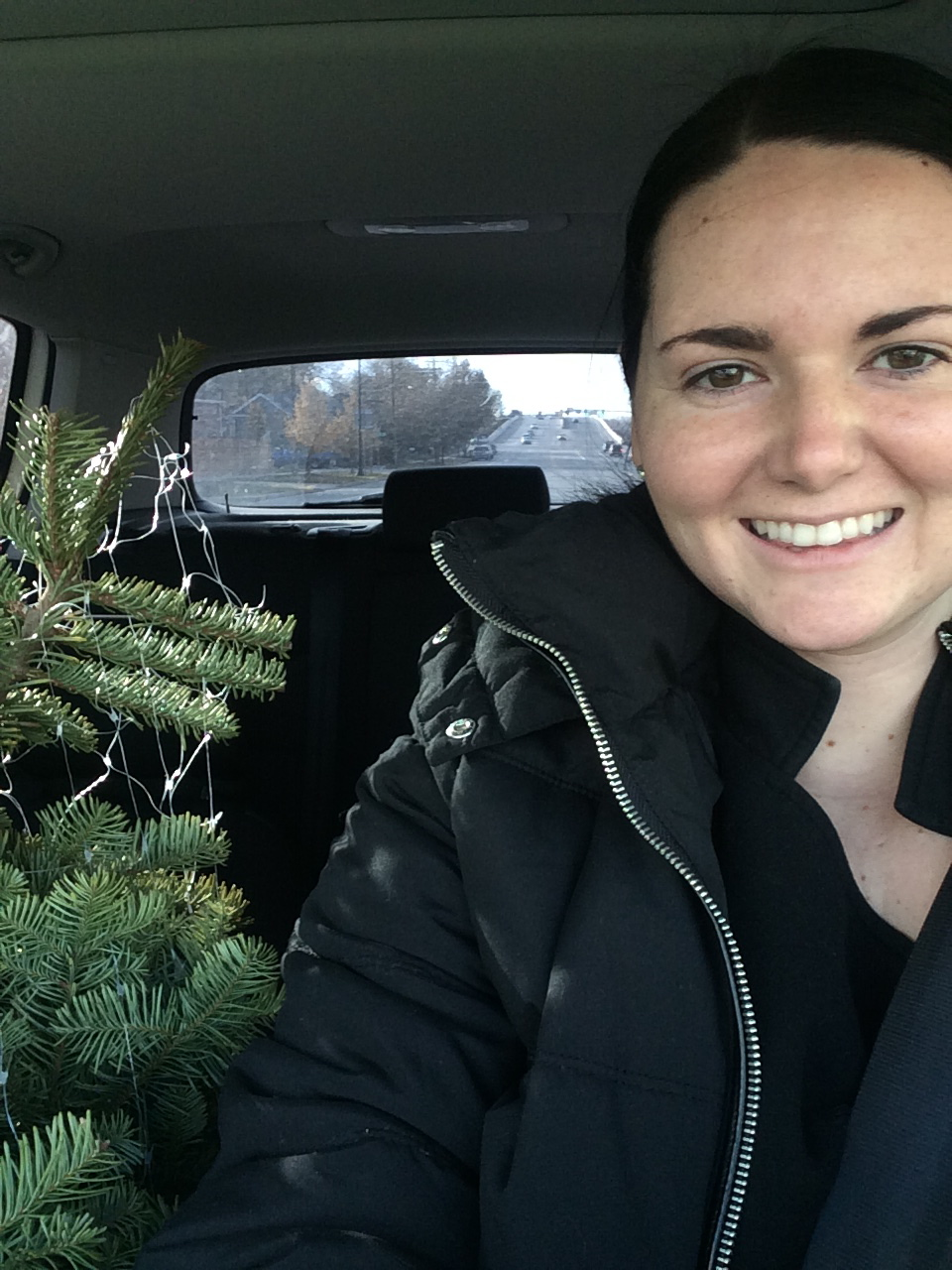 Oh Christmas Tree, Oh Christmas Tree Dec. 6, 2015 858