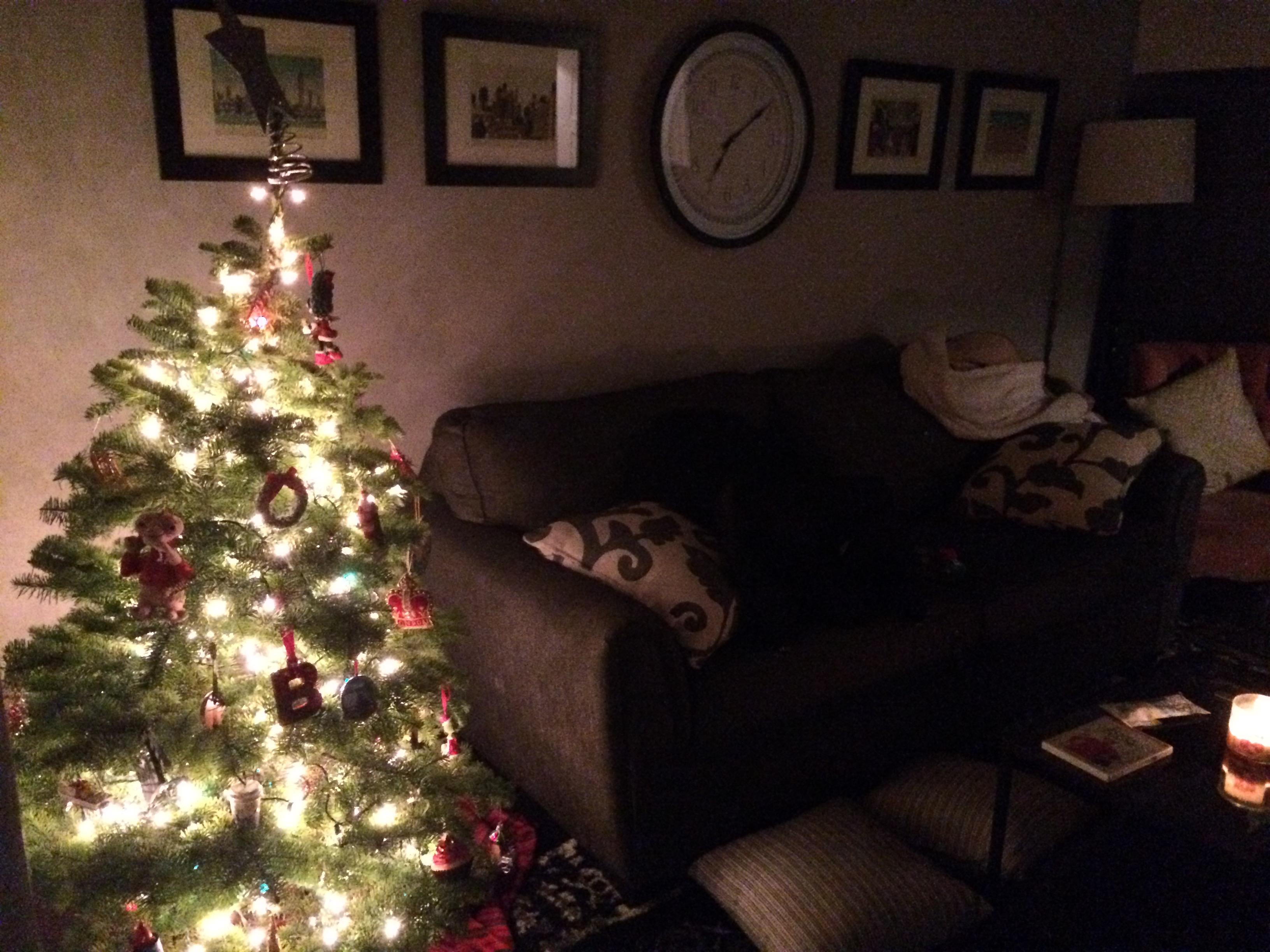 Oh Christmas Tree, Oh Christmas Tree Dec. 6, 2015 924