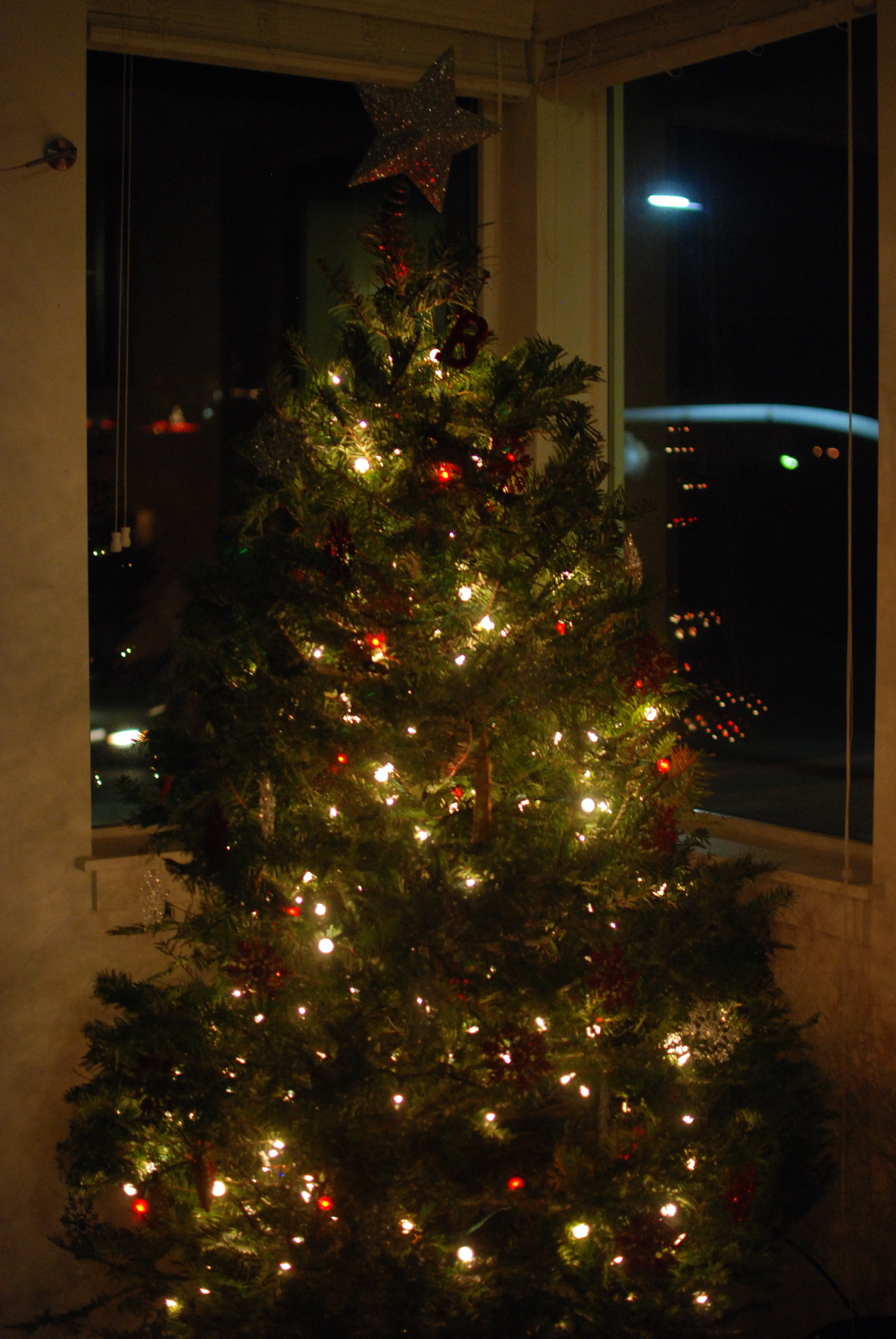 Oh Christmas Tree, Oh Christmas Tree - from the past. 0047