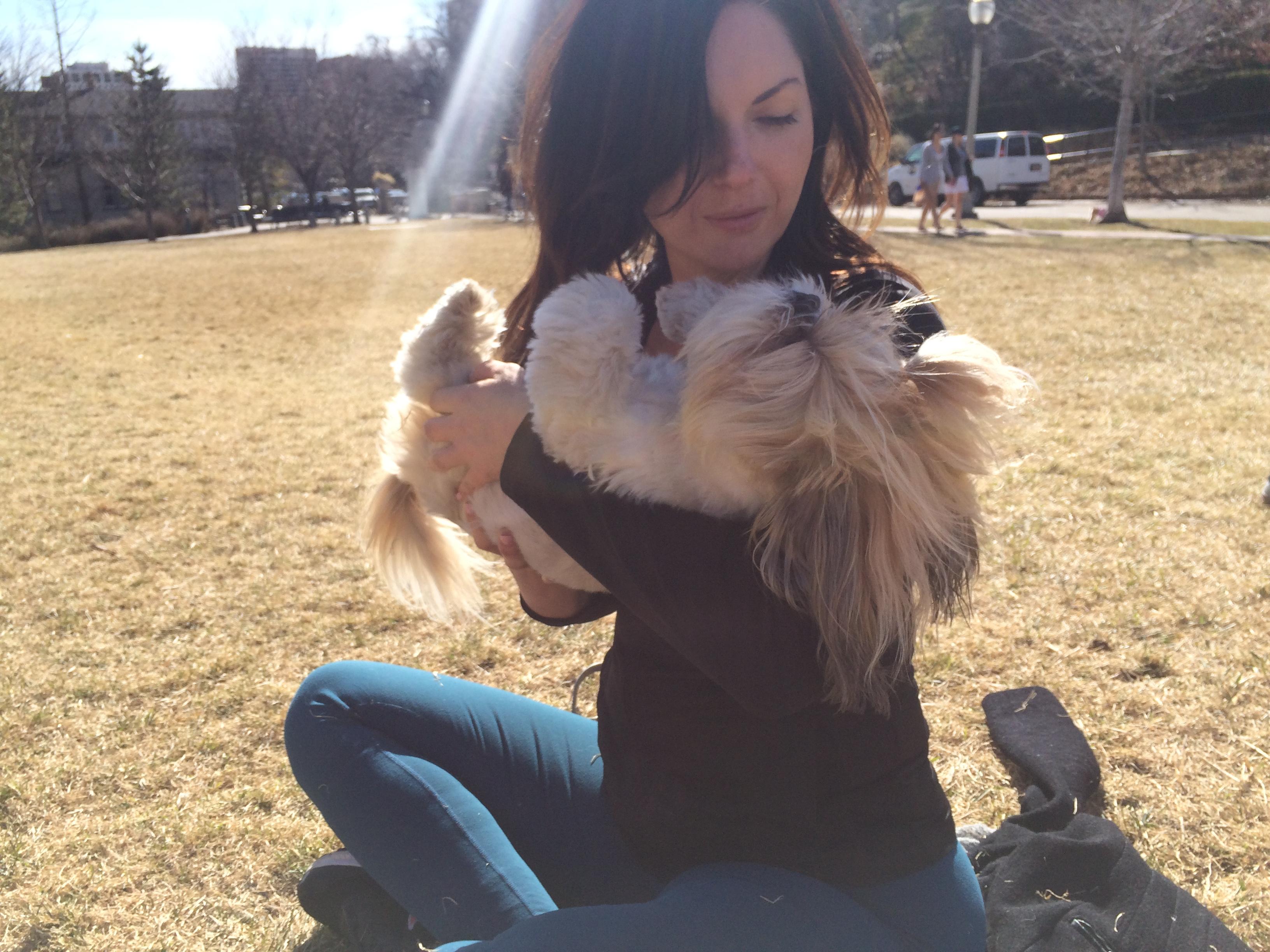 My no. 1 pup. Feb 28, 2016 919